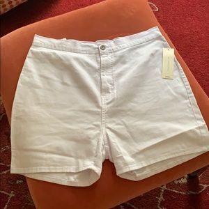 NWT Fashion Nova Curve Shorts